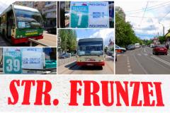 frunzei2
